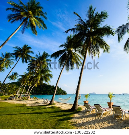Beach with palms on thailand island - stock photo