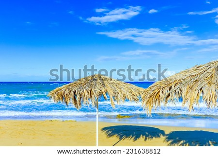 beach with thatched umbrellas on the shore of the island of Cyprus