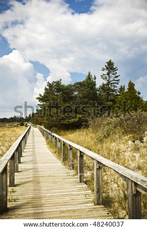 Beach Wooden Path - stock photo
