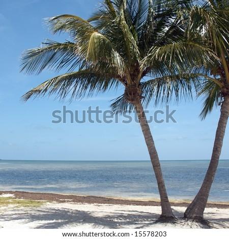 Beaches of Key West, Florida - stock photo