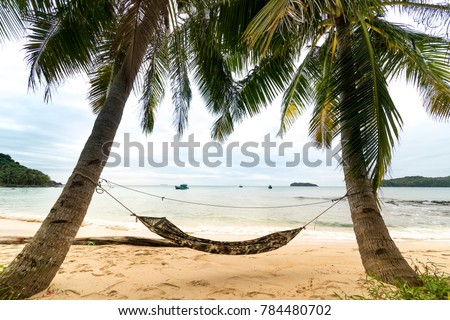 beachside hammock tied to a tree with relaxing holiday on the white sand tropical beach and beach hammock hanging thick tree palm stock photo 567194659      rh   shutterstock