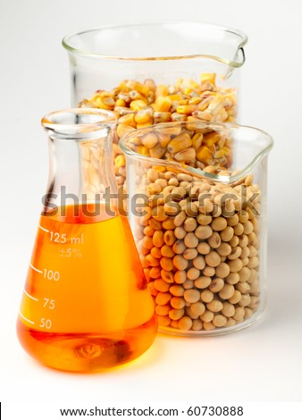 beaker of golden ethanol and flasks filled with corn and soybeans shot in lab on white background with soft shadow - stock photo