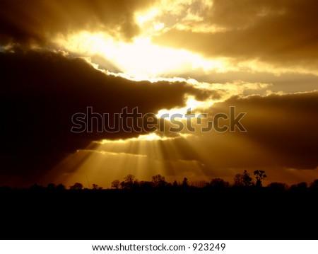 Dark Vs Light Nature
