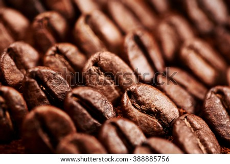 Beans and ground coffee - stock photo