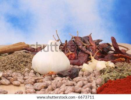 Beans, Garlic, Paprika and Mexican Oregano, Shallow DOF - stock photo