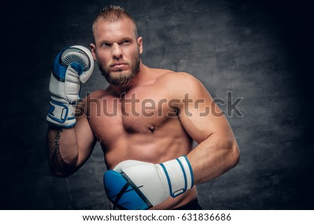 Bearded puncher in a boxer gloves over grey vignette background.
