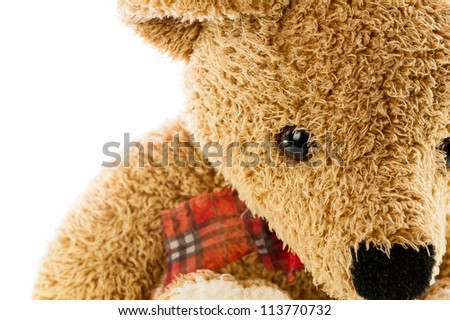 bears doll on white background isolated - stock photo