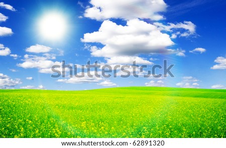 Beatiful morning field with bright sun
