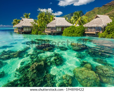 Beautiful above and underwater coral landscape of a tropical resort - stock photo