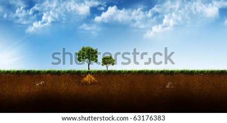 Beautiful abstract tree illustration background - stock photo
