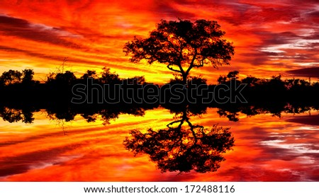 Beautiful African sunset reflected in water, in the Kruger National Park, South Africa - stock photo
