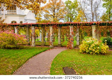 Beautiful alley in a country house in autumn, Saint-Petersburg, Russia. - stock photo