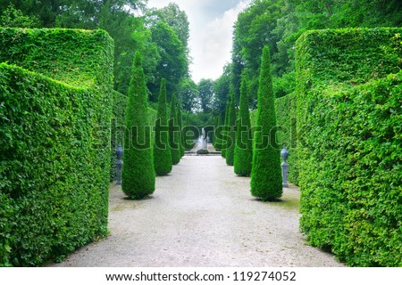 Beautiful alley in the park - stock photo
