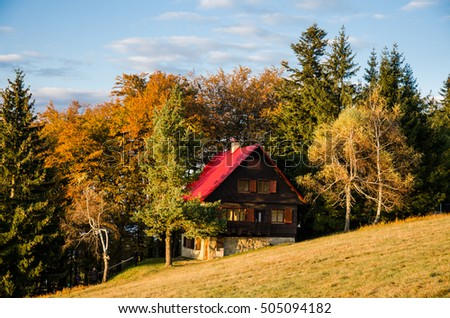 Beautiful alone cottage with red roof covered in colorful october autumn nature full of colored trees and near by gold meadow and under clear blue sky. Original wallpaper in last evening sunset light.