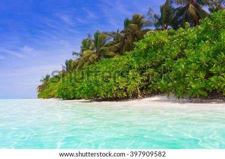 Beautiful amazing nature background. Tropical blue sun sea in Maldives. Luxury holiday resort. Island atoll about coral reef. Fresh freedom. Adventure day. Coconut paradise. - stock photo