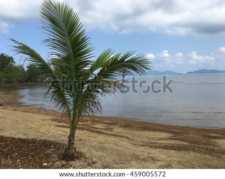 Beautiful amazing nature background. Tropical blue sun sea in Thailand . Luxury holiday resort. Island atoll about coral reef. Fresh freedom. Adventure day. Snorkeling. Coconut paradise. - stock photo