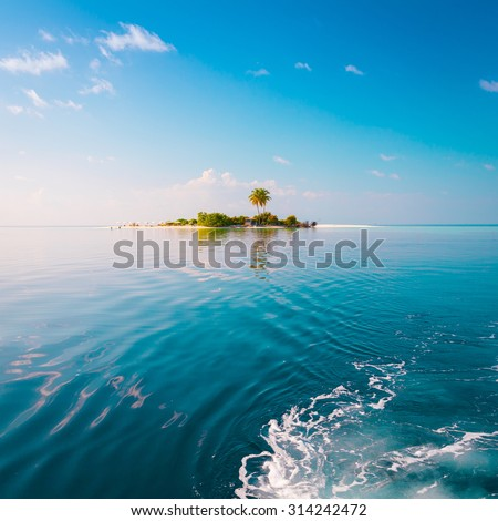 Beautiful amazing nature background. Tropical blue sun sea. Luxury holiday resort. Island atoll about coral reef. Fresh  freedom. Adventure day. Snorkeling. Coconut paradise. unique - stock photo