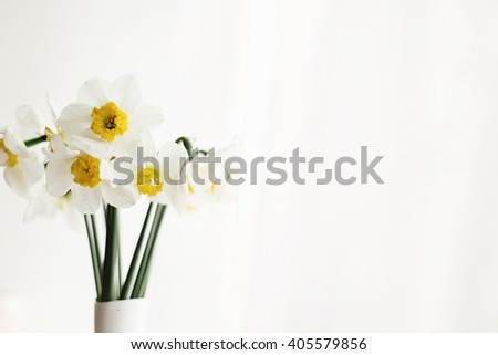 beautiful amazing yellow daffodils in modern white vase on background of morning light from window