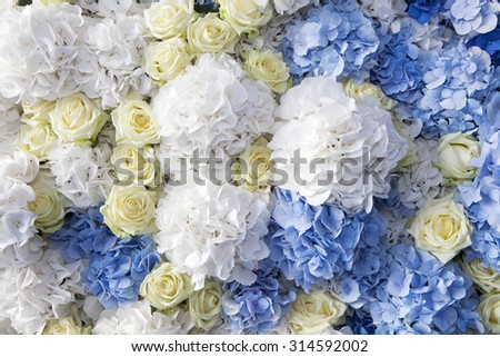 beautiful and delicate bouquet of white rose and blue buttercups  - stock photo