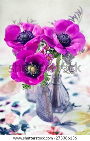 beautiful anemone flowers in a glass vase on the table.  - stock photo