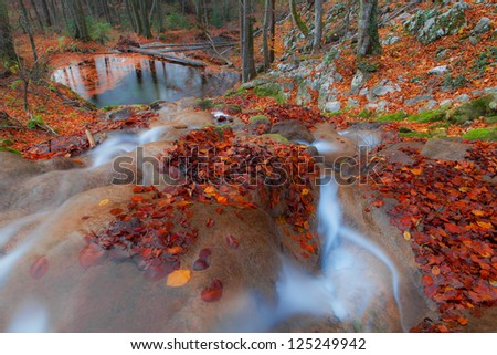 Beautiful autumn foliage, waterfalls and reflection patterns in mountain stream in the forest - stock photo