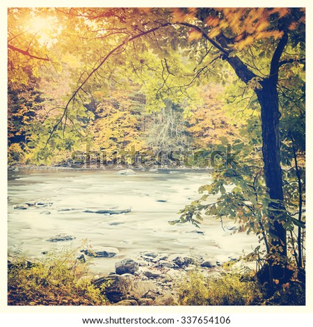 Beautiful autumn forest with long exposure flowing river with Instagram effect filter - stock photo