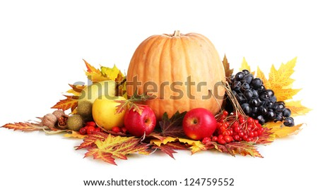 beautiful autumn harvest and leaves isolated on white - stock photo