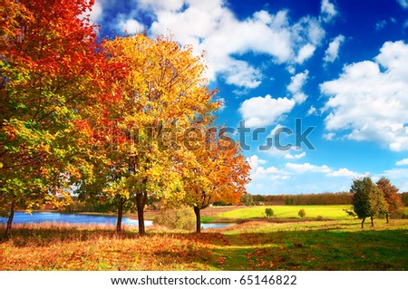 Beautiful autumn landscape at the morning park - stock photo