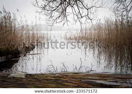 beautiful autumn morning on lake  - stock photo