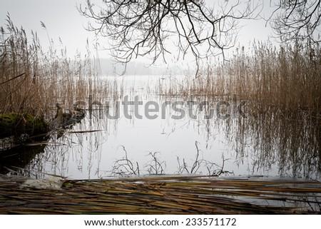 beautiful autumn morning on lake  - stock photo