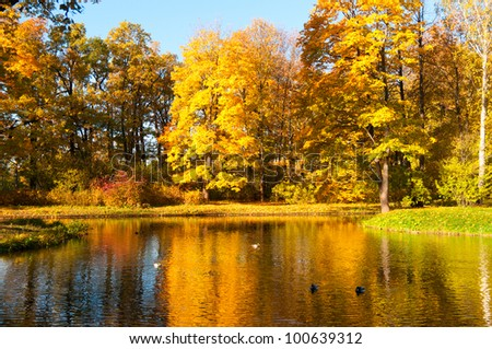 beautiful autumn park view at sunny weather - stock photo