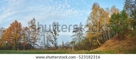 Beautiful autumn red and orange forest. Panpramic landscape. Autumn concept