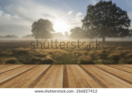Beautiful Autumn sunrise countryside landscape with wooden planks floor - stock photo