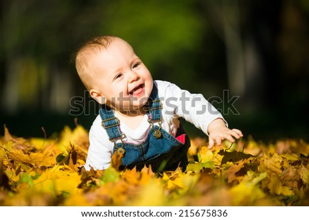 Beautiful baby crawling  in fallen leaves - autumn scene - stock photo