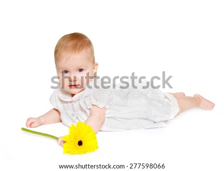 beautiful baby dressed in white dress holds gerbera, looking into camera on white background