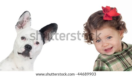 Beautiful baby girl and funny dog isolated on a over white background - stock photo