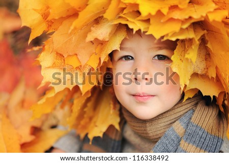 beautiful baby with a wreath of yellow leaves on his head. Sunny autumn day