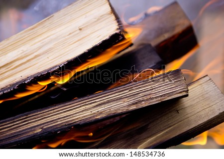 Beautiful background of burning logs outdoors - stock photo