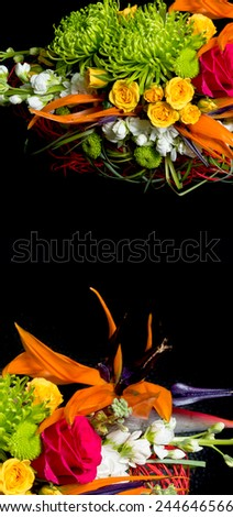 beautiful background with blossom isolated on black - stock photo