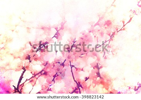 Beautiful background with cherry blossoms. Flowers vintage background - stock photo