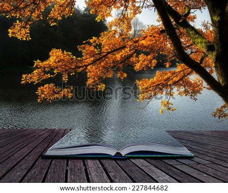 Beautiful backlit golden Autumn tree in front of lake