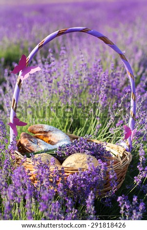 Beautiful basket with purple ribbon in meadow of lavender flowers - stock photo
