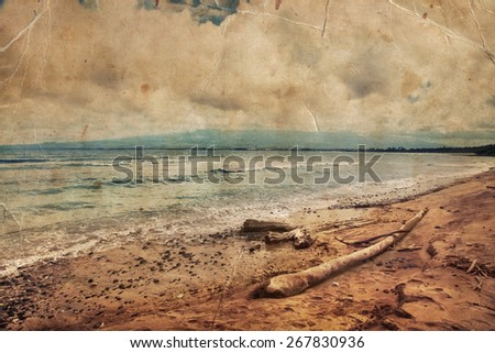 beautiful beach and tropical sea, Pacific Ocean water with waves, tree logsbrought by the ocean. Sea shore with sand on Maui Hawaii. Sunshine background - stock photo