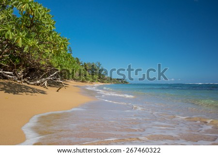 Beautiful beach coastline with golden sand & green trees - stock photo