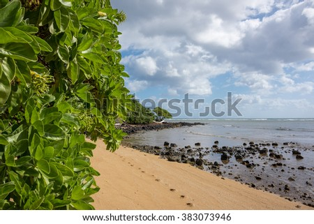 Beautiful beach coastline with golden sand, green trees & lava rocks - stock photo
