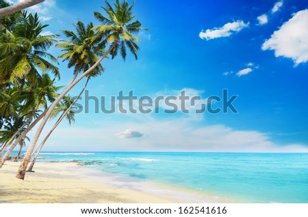 Beautiful beach in Sri Lanka on a bright sunny day - stock photo