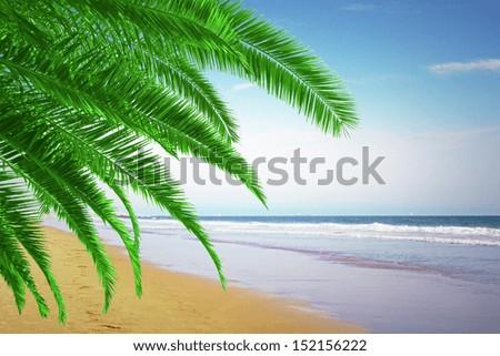 beautiful beach on the se - stock photo