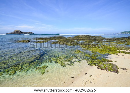 Beautiful beach under the bright blue sky.