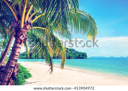 Beautiful beach. View of nice tropical beach with palms around. Untouched tropical beach. Holiday and vacation concept