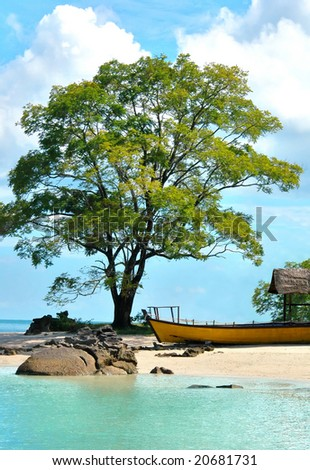 beautiful beach with large tree and boat - stock photo